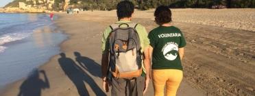 Crida de voluntariat ambiental pel seguiment de la tortuga babaua a les platges de Tarragona l'estiu de 2018