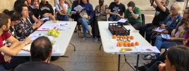 Més d'una vintena d'entitats promouen la Campanya Fruita amb Justícia Social.
