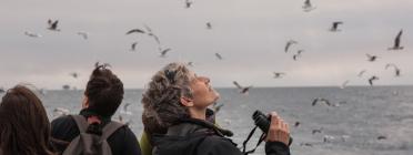 Delta Birding Festival 2014