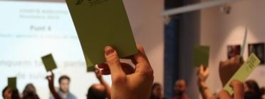Votació al CNJC de la resolució sobre suïcidi. Font: CNJC