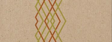 Il·lustració d'una xarxa, imatge de portada de l'estudi