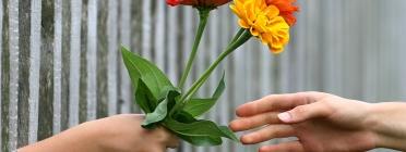 Mà donant ram de flors entre reixa