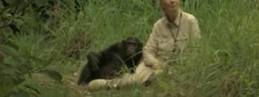 La conservacionista i activista Jane Goodall fa 80 anys a Catalunya