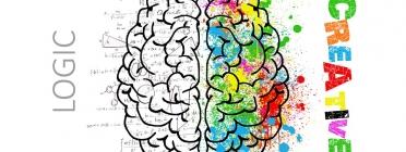 Cervell dividit