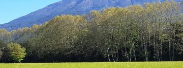 Parc natural del Montseny (Font: turisme-montseny.com/es/)