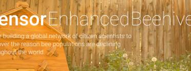 Open Source Beehives, un projecte obert per la protecció de les abelles!
