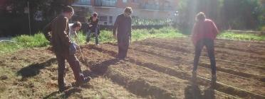 Estudiants de la URV col·laborant en l'adequació del sòl de l'hort