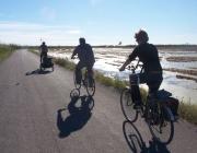 Anar en bicicleta com a forma de tenir cura de la terra (imatge: flickr/diluvi)