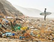 (imatge: Let's clean Europe)