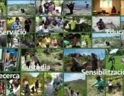 Recull d'imatges de la Setmana del Voluntariat Ambiental 2013 (XVAC)