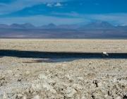 Salar d'Atacama. Font: pacheco.campos (CC BY-SA 2.0)
