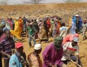 Els projectes finançats són bàsicament a l'Àfrica