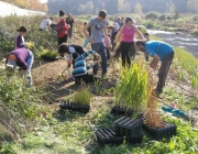 Actuació de voluntaris al riu Ripoll a Sabadell (foto: ADENC)