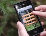 Les app permeten disposar de dades naturalistes des de allà on ens trobem (imatge:inaturalist.org)