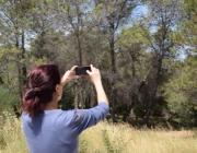 Alerta Forestal busca la protecció dels boscos amb la col·laboració de persones i entitats