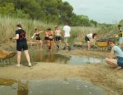 Adolescents al camp de treball de la desenbocadura  del riu Gaià amb l'Associació Mediambiental La Sínia