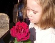 La SCEA planteja la reflexió sobre l'impacte socioambiental de les roses de Sant Jordi