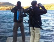 Cens d'ocells hivernants a l'Estany de Banyoles amb Limnos