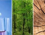 Fins al 2 de maig es poden presentar les candidatures al Premi Medi Ambient, atorgat pel Departament de Territori i Sostenibilitat de la Generalitat de Catalunya.