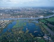 Els aiguamolls de la ciutat de Londres són un dels espais naturals preferits per ciutadania londinenca