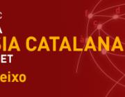 Banner del Dia de la Poesia Catalana a Internet