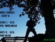 Cartell de la trobada de voluntariat ambiental de la Banqueta de Juneda (imatge: labanquetadejuneda.cat)