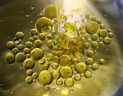 Oli i aigua (imatge: flickr, Beatriz Bonal)