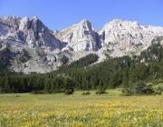 Parc Natural del Cadí-Moixeró (imatge: Generalitat de Catalunya)