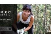 L'entitat Boscos de Muntanya obre inscripcions a les estades 2017 (imatge: boscos de muntanya)