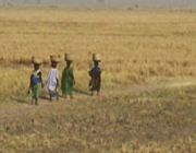 Dona, Àfrica rural i aigua