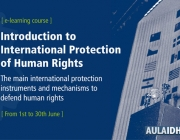 Introduction to International Protection of Human Rights