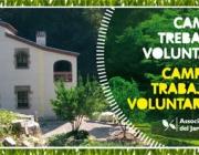 Camp de treball amb els amics del Jardí Botànic de Barcelona (imatge: amicsjbb.org)
