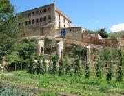 Una vista dels horts comunitaris de Can Masdeu