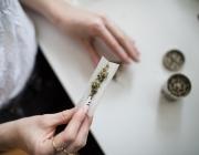 En el jovent, el consum que predomina és el cànnabis amb un 72'2%. Font: Unsplash. Font: Font: Unsplash.