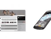 Ornitho.cat té una web i una app