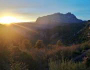 Espai Natura Puigventós (imatge: Fundació Catalunya-la Pedrera)