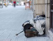 Les persones sense llar a Barcelona es mantenen estables en els darrers anys