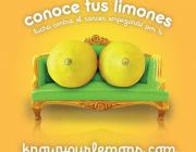 """""""Coneix les teves llimones"""", una campanya per lluitar contra el càncer de mama"""