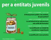 Cicle de finançament públic per a entitats juvenils