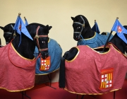 Cavallets de Barcelona