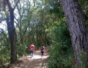 L'entitat ambiental Accionatura i el Parc de Collserola dissenyaran itineraris terapèutics a la serra (imatge:parcnaturalcollserola.cat)