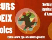 Campanya del concurs #EnBoles del Consell de Joventut de Barcelona