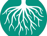 Les arrels, símbol en el nou logotip de CoopFunding