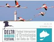 El Delta Birding Festival es celebra del 23 al 25 de setembre al Delta de l'Ebre (imatge: ornitologia.org)