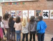 La commemoració del DENIP 2017 a Lleida mirarà cap a les persones refugiades - Foto: Coordinadora d'ONGD i aMS de Lleida