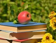 Poma damunt de llibres