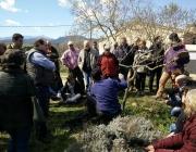 Curs d'agricultura ecològica amb la Fundació Emys (imatge: fundacioemys.org)