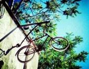 (imatge: Biciclot)