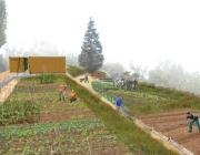 Image il·lustratiu de l'Hort ecològic i comunitari Marianao