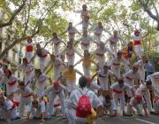 Els falcons de Barcelona durant la Diada Nacional